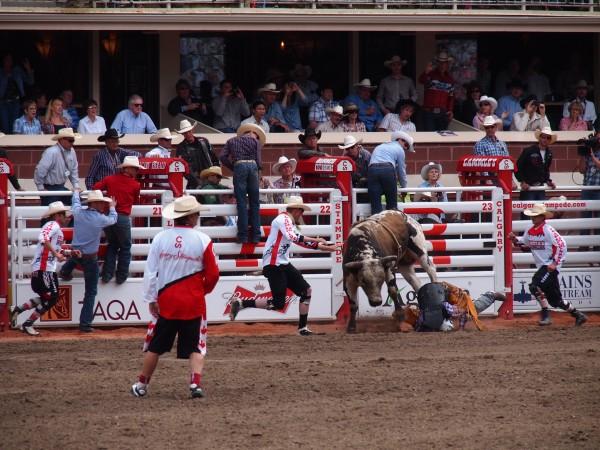 bull riding stamepde 4