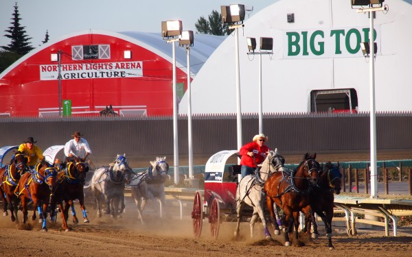 chucks race to the finish calgary stampede
