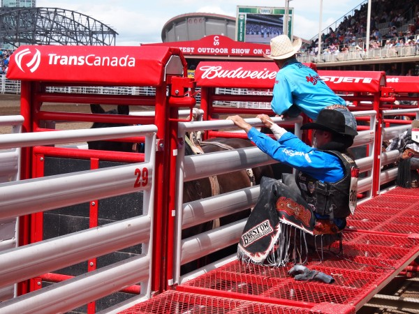 behind the chutes calgary stampede