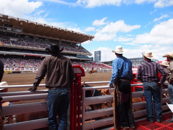 behind the cowyboy chutes stampede calgary