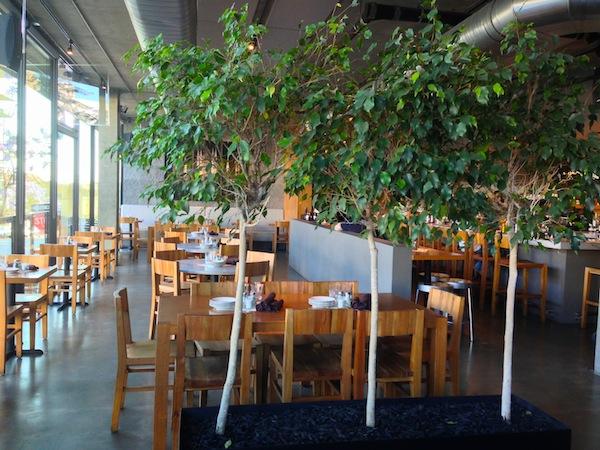 monello restaurant SD