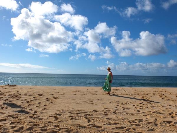 beach + north shore