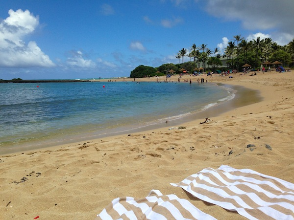 turle bay beach resort beach