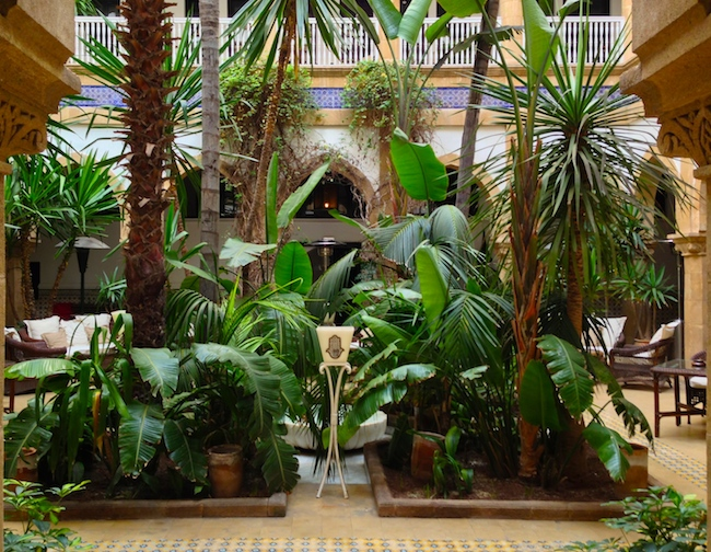 The palm-dressed courtyard, where I spent a lot of time.