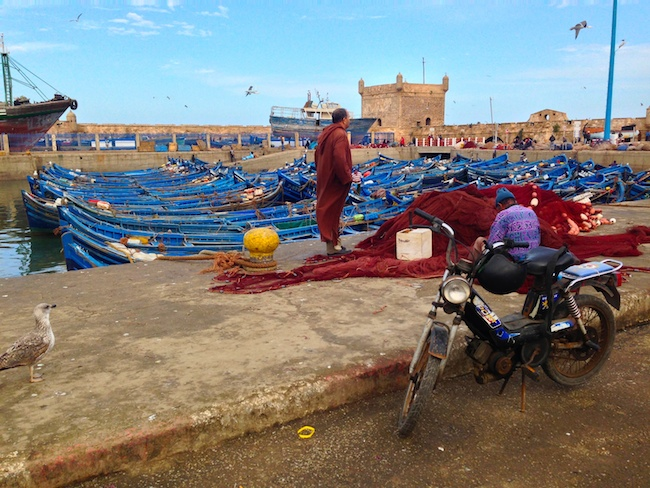 Fishing {then tourism} is Essaouira's largest industry
