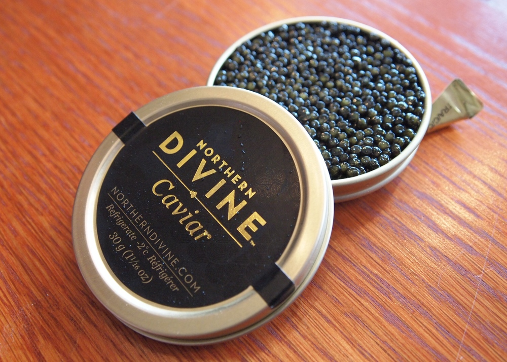 Visiting the world's only organic sturgeon caviar facility near THE Restaurant. This world-class product will soon be featured on the menu.