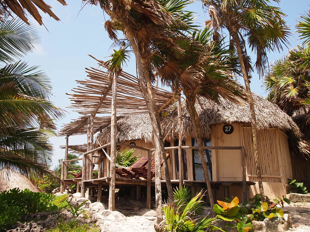 Swiss Family Robinson-style abodes