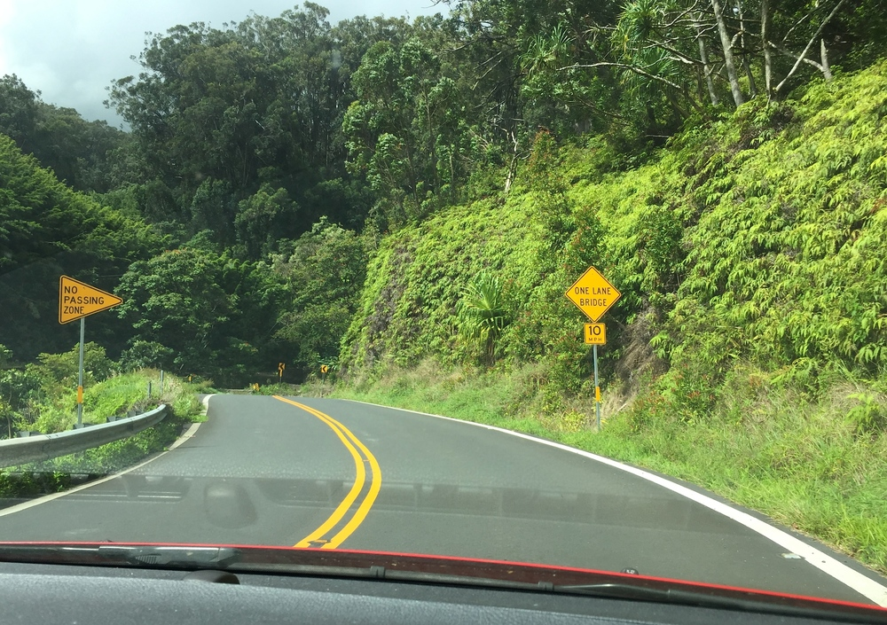 road to hana turns