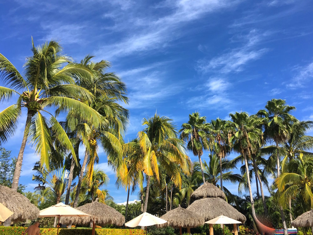 """Palapa vibes at our first hotel,  Rancho Banderas , a 48-room, all-suite, beachfront stay where palm trees merge with practical amenities in '90s-styled glory. {Mr. Trip Styler and I feel Rancho is rare gem even though it's not chocolate-on-your-pillow fancy or design-focused.} Here,one main dining room overlooks the Pacific Ocean, and at mealtimes  you can choose to do all your eating in the dining room, pool or beach via a """"meal plan"""" option, or do your own thing."""
