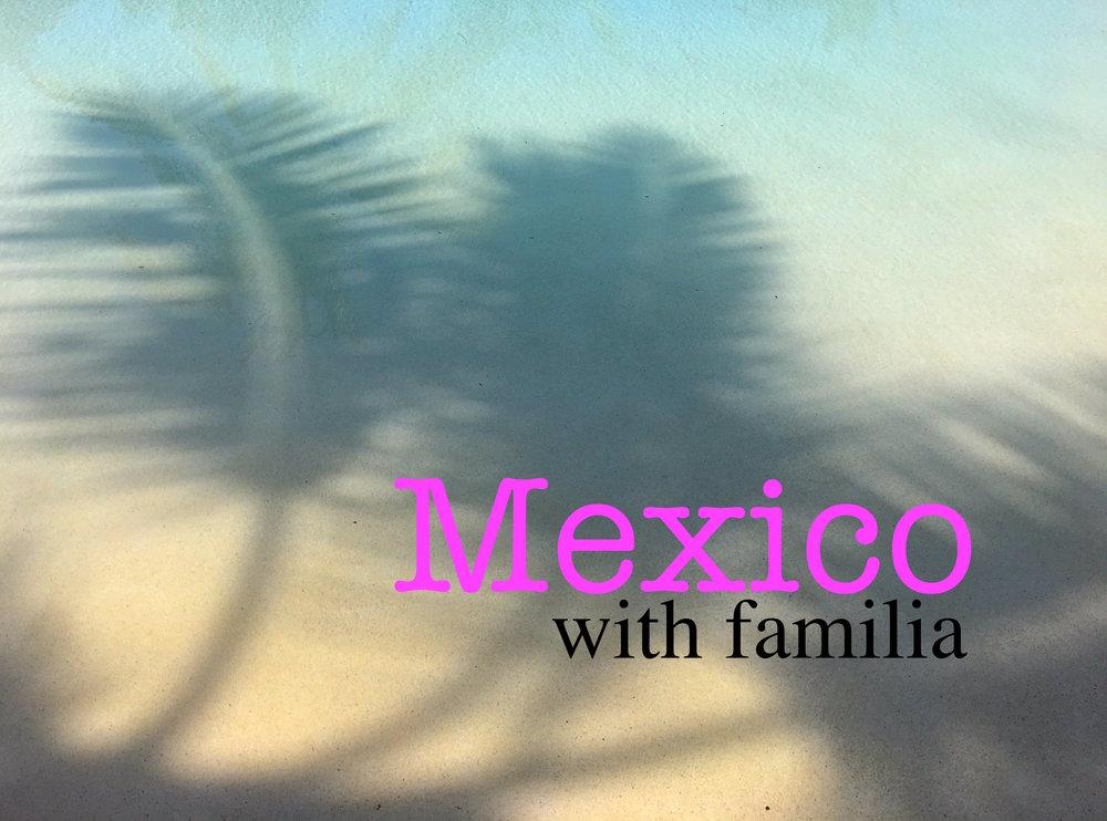 Mexico with family + punta mita