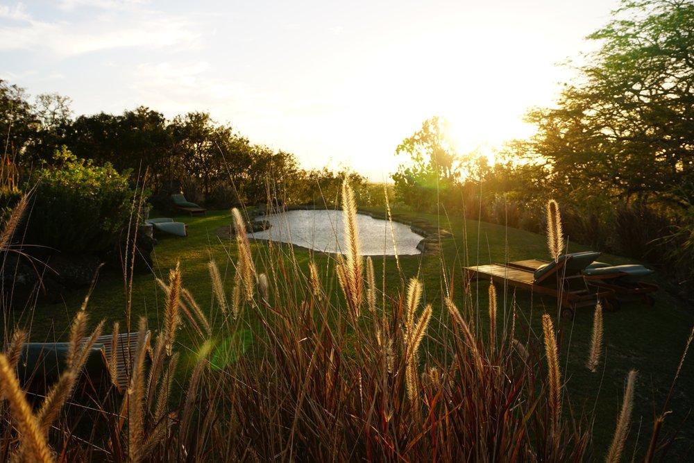 The communal swimming pond