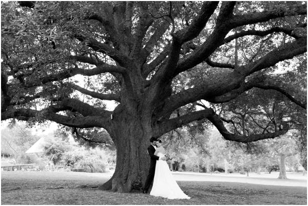 Sydney wedding photography by Mr Edwards Sydney wedding photographer_0553