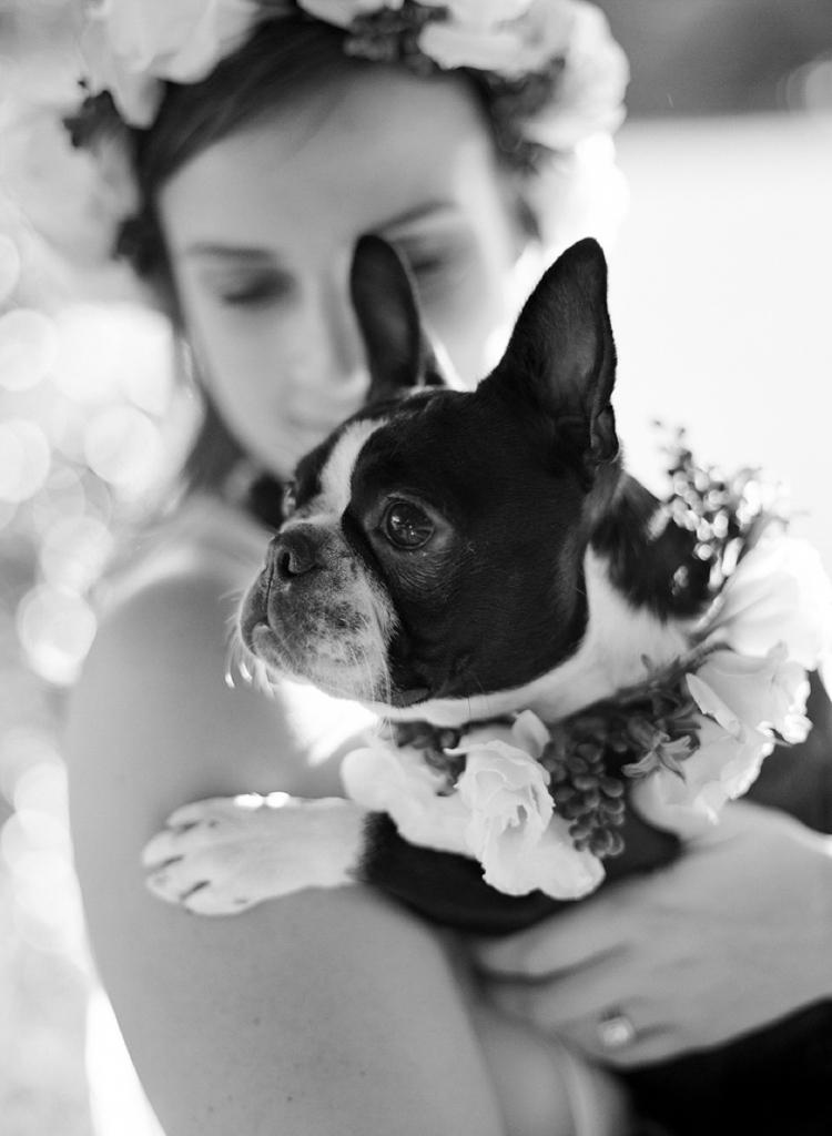Mr-Edwards-Photography-Sydney-wedding-Photographer_1430.jpg