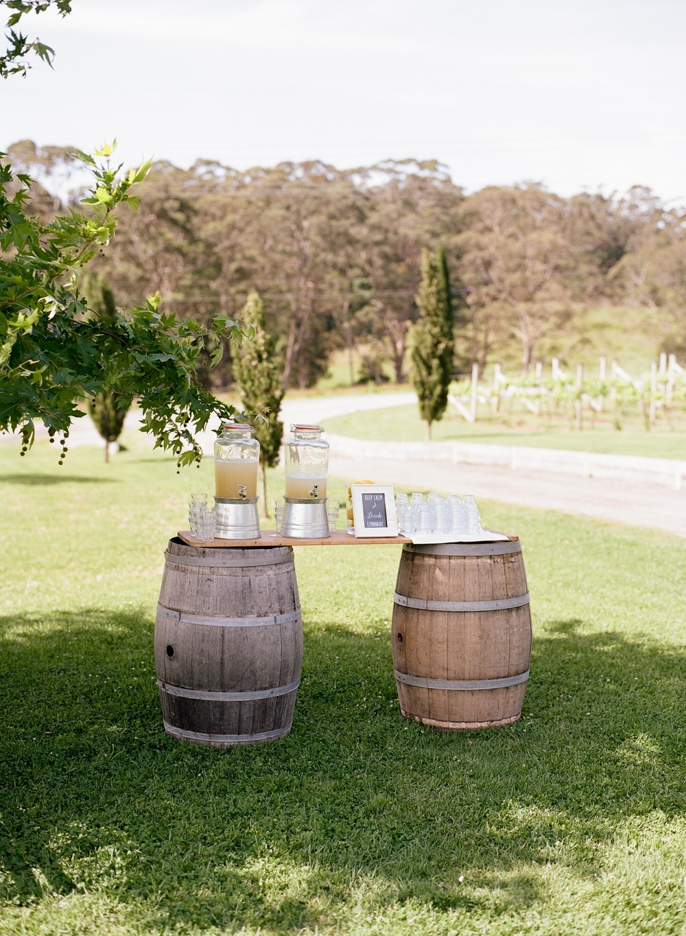 Cupitt Winery Wedding by Mr Edwards Photography_0836.jpg