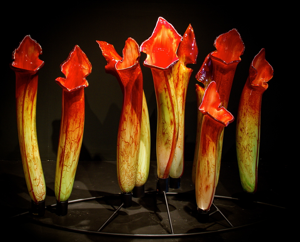 Carnivorous 2012 Glass and Steel copy.jpg