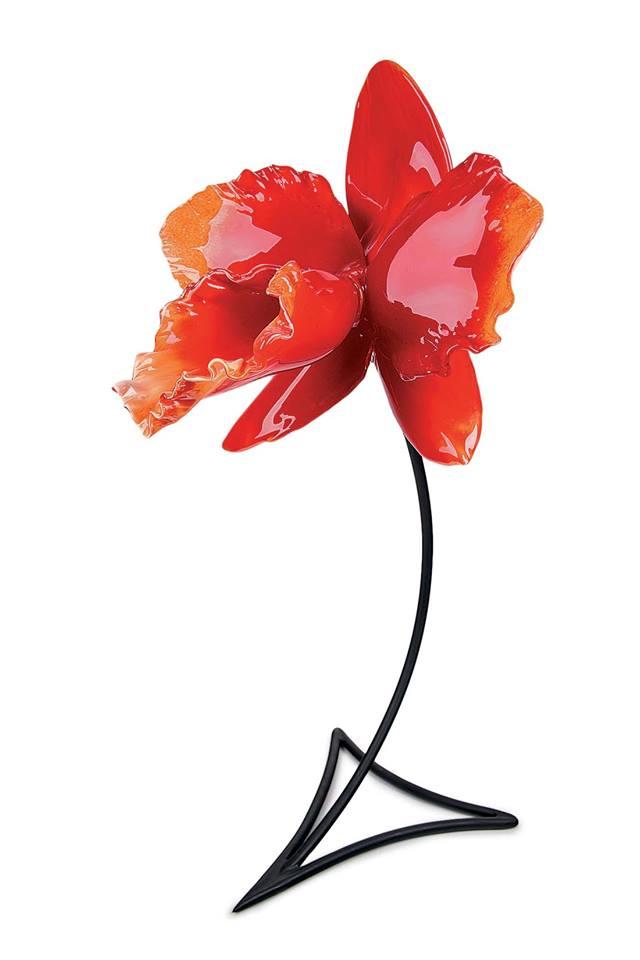 Red Cattleya.jpg