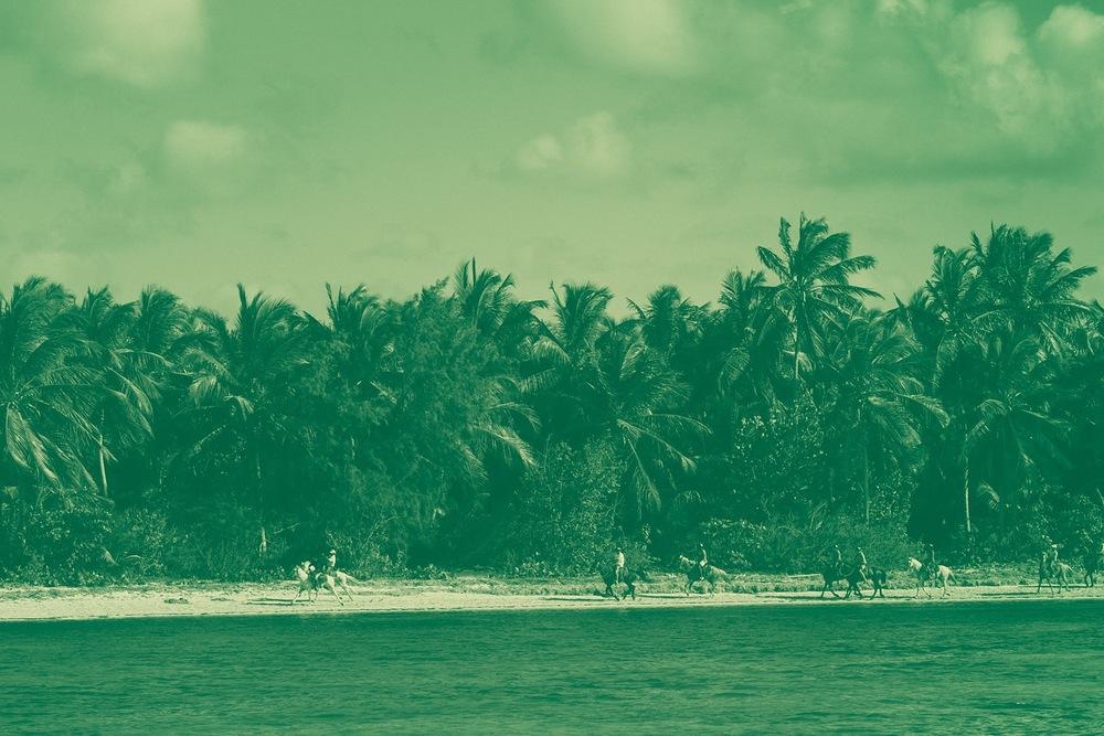 Dominican Green-1.jpg