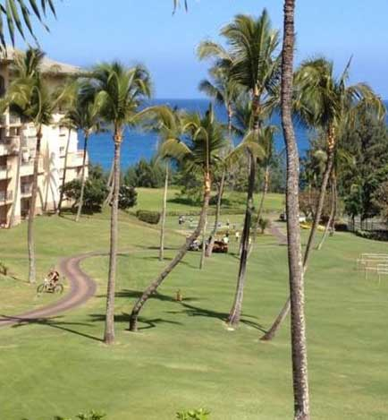 2012 XTerra World Championship mountain bike course transition at Kapalua.
