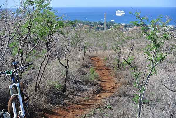 Mountain bike trail in West Maui.
