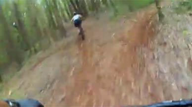 Mountain biking trails in the Makawao Forest Reserve on Maui.