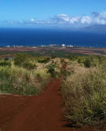 Maui mountain bike trails like this one above Kaanapali resort.