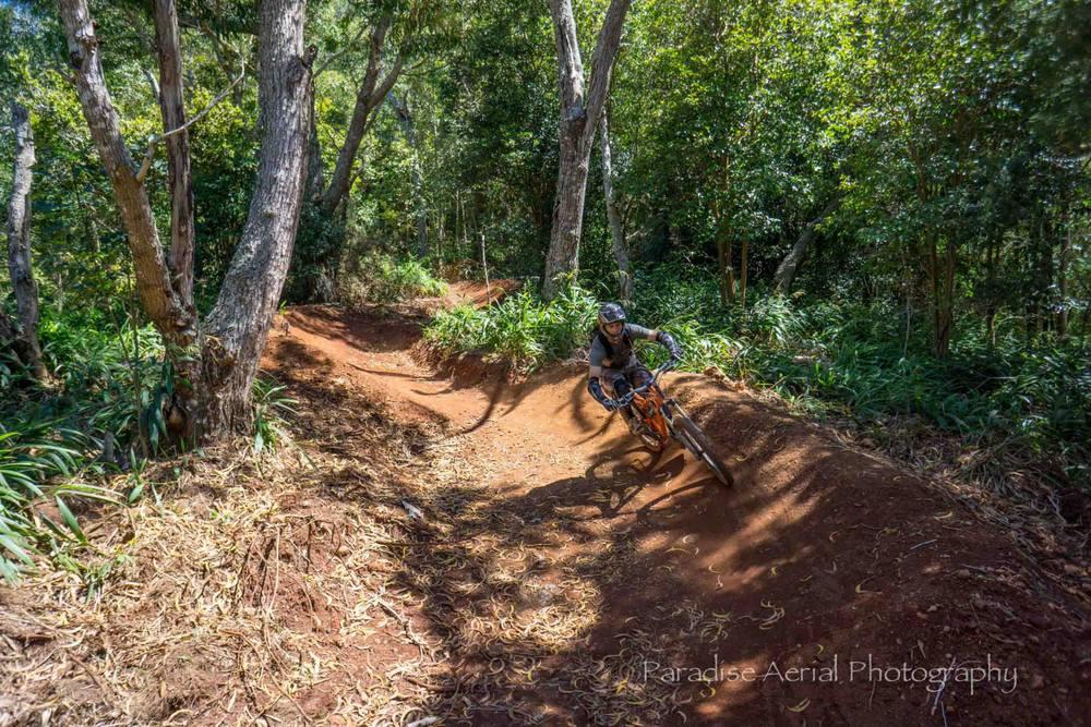 Makawao forest reserve mtn bike berms