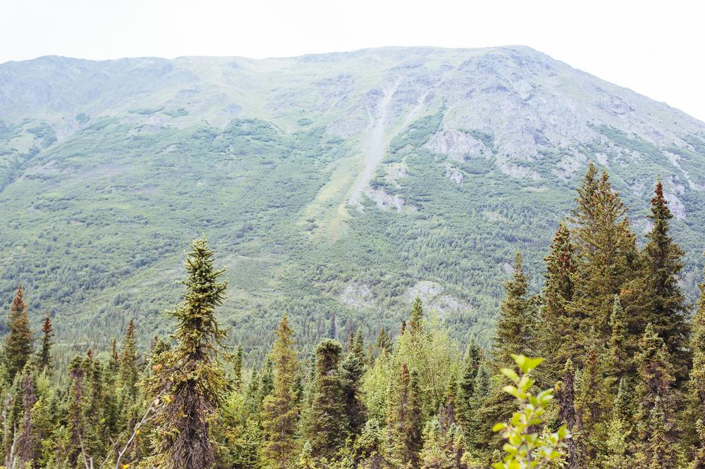 2015-08-alaska-45.jpg