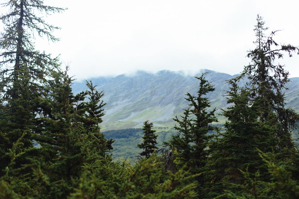 2015-08-alaska-78.jpg