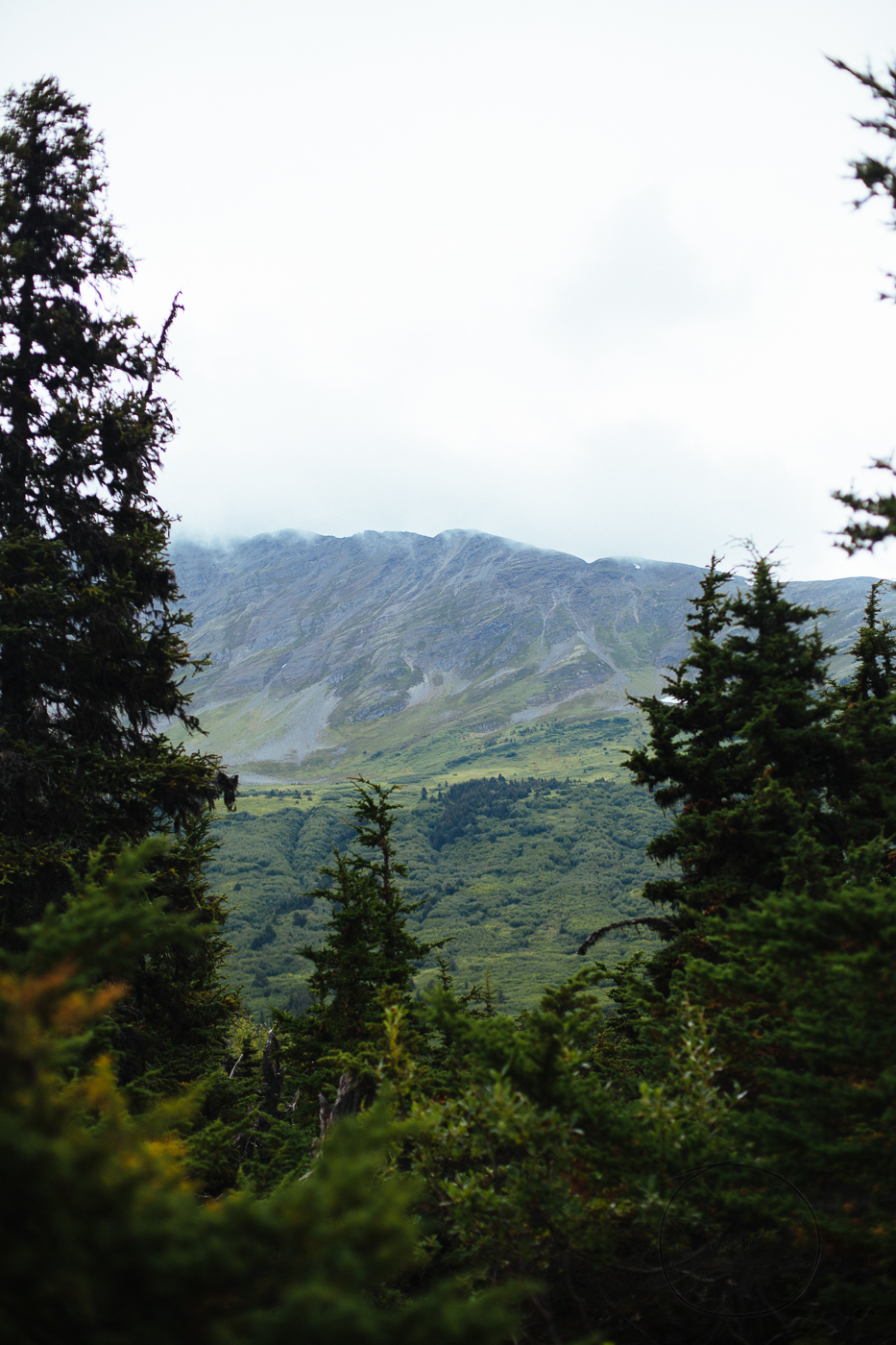 2015-08-alaska-79.jpg