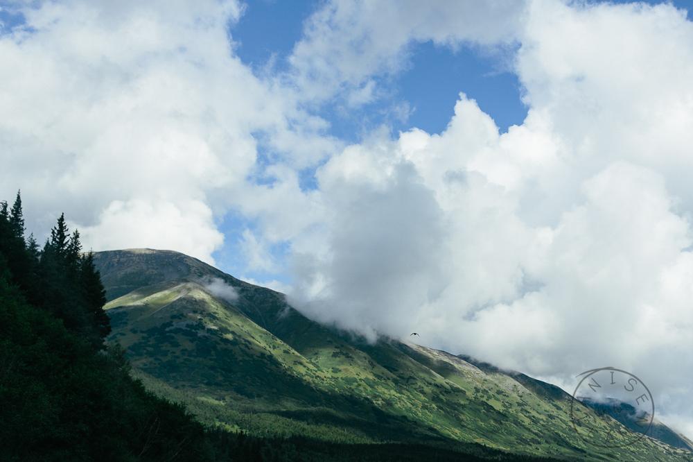 2015-08-alaska-121.jpg