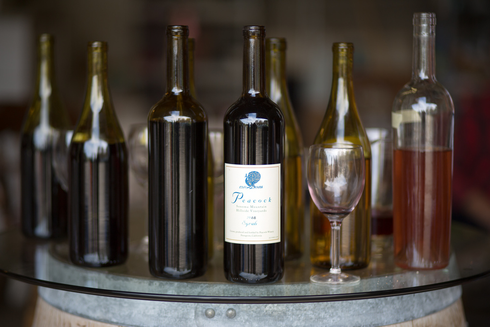 Peacock-Wine-2015-66.jpg