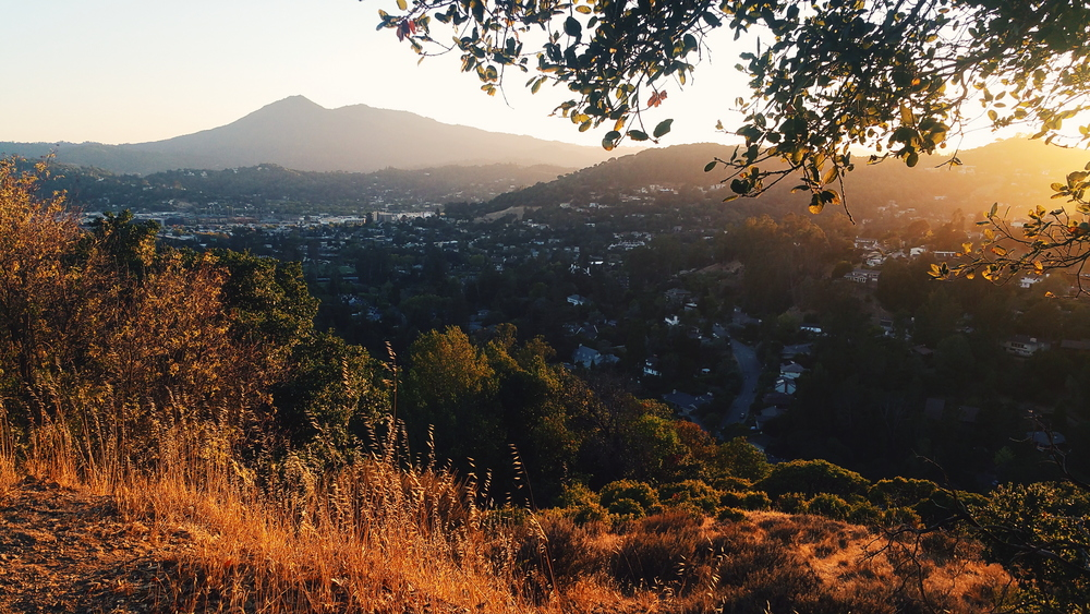 I'll include a recent picture of Mt. Tam, because this is a photography blog afterall!