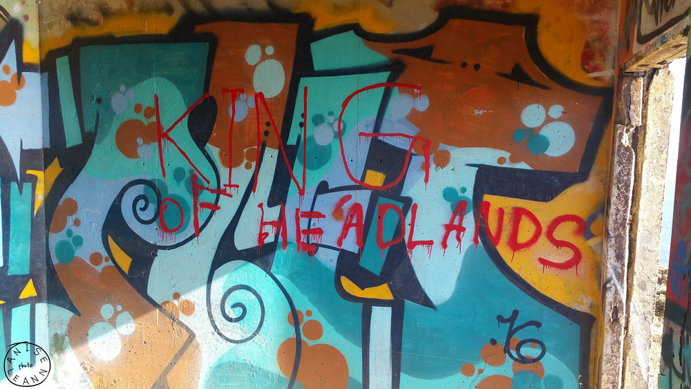 locationshoot-headlands-anise-leann-photography (25 of 37).jpg