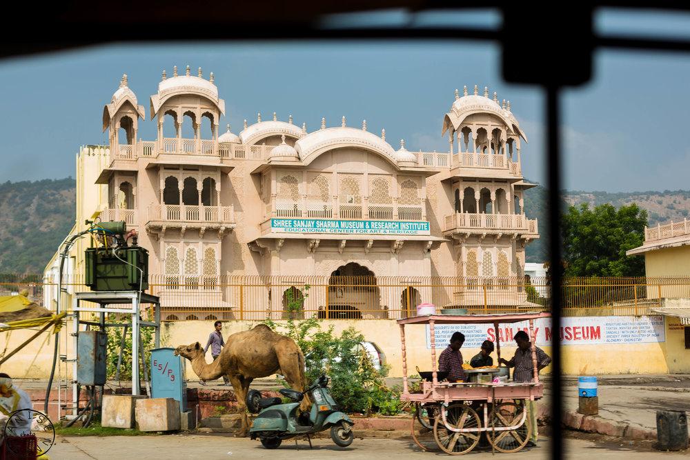 India-Jaipur-Day2-33.jpg