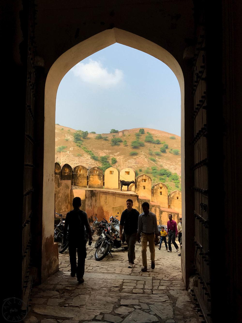 India-Jaipur-Day2-62.jpg