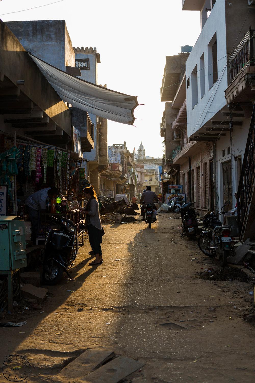 India-Pushkar-16.jpg