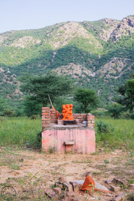 India-Pushkar-72.jpg