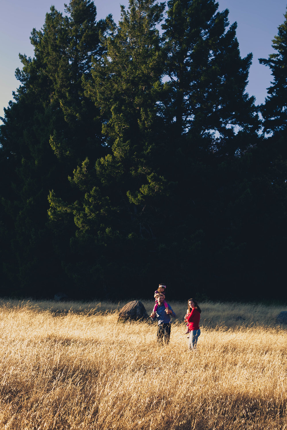 Mill Valley Photographer, by Family Photographer Anise LeAnn Pho