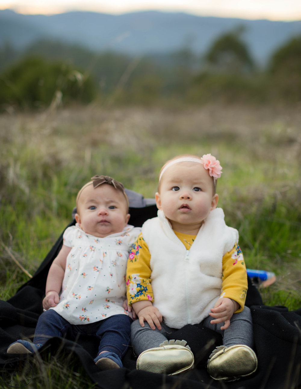 Extended Family Photos in Marin County