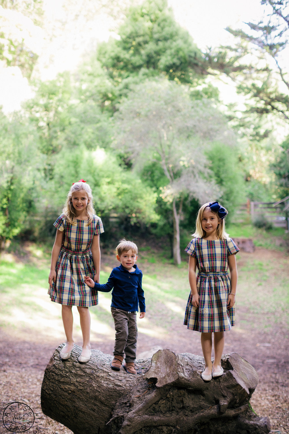 Mill VAlley Family Pictures