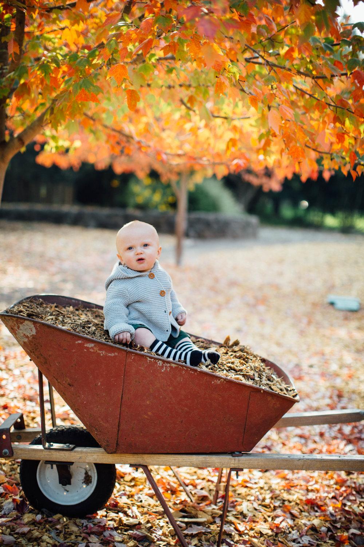 Brooks 8 months -31.jpg
