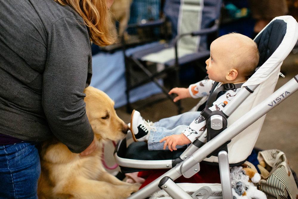 Dog Show SF-18.jpg