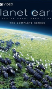 PLANET EARTH VOL. I - REMARKABLE!! See the awesomeness of mother nature, the beauty and struggle of life on earth.