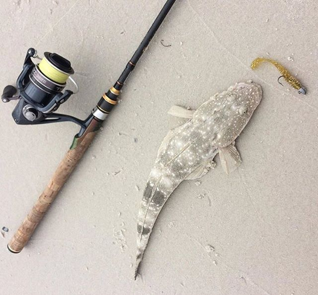 A beautiful flathead off the sand... @batesfishing #fishing #fishingaustralia
