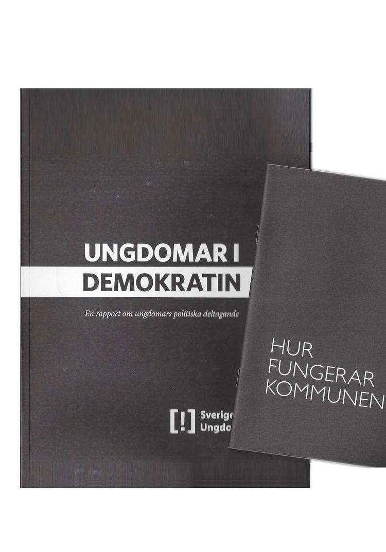 Rapport-Ungdomar-i-demokratin.png