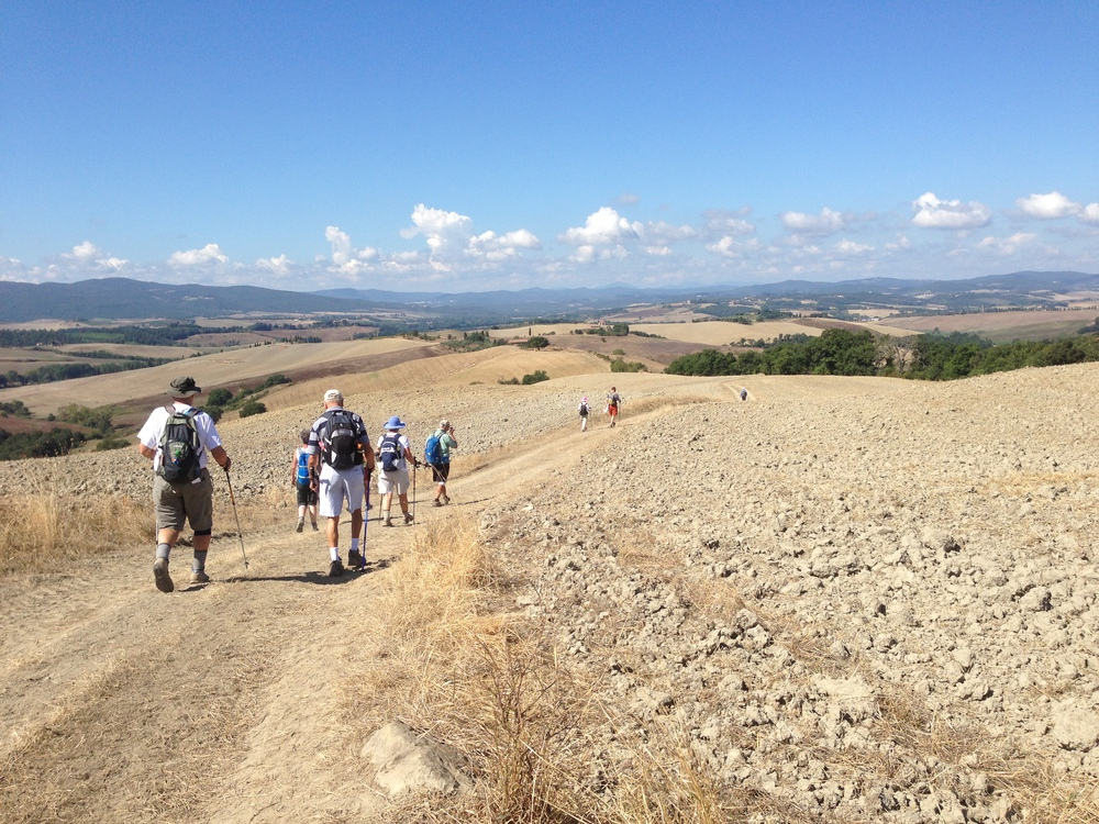 Pilgrims walking from San Gimignano to Montalcino , September 2013