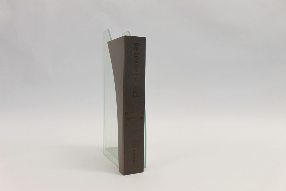 2003 - Technological Innovation Award (Gapimocap50)