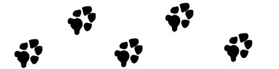 Paw pints clip art.jpeg
