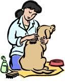 Nice dog handling clip art.jpg