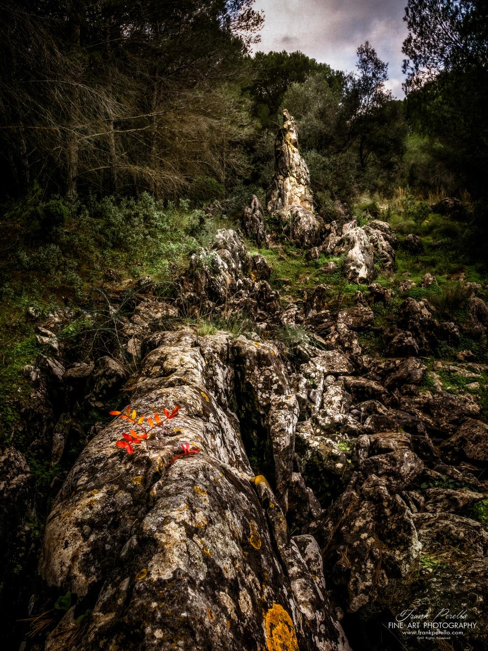 druid's stone